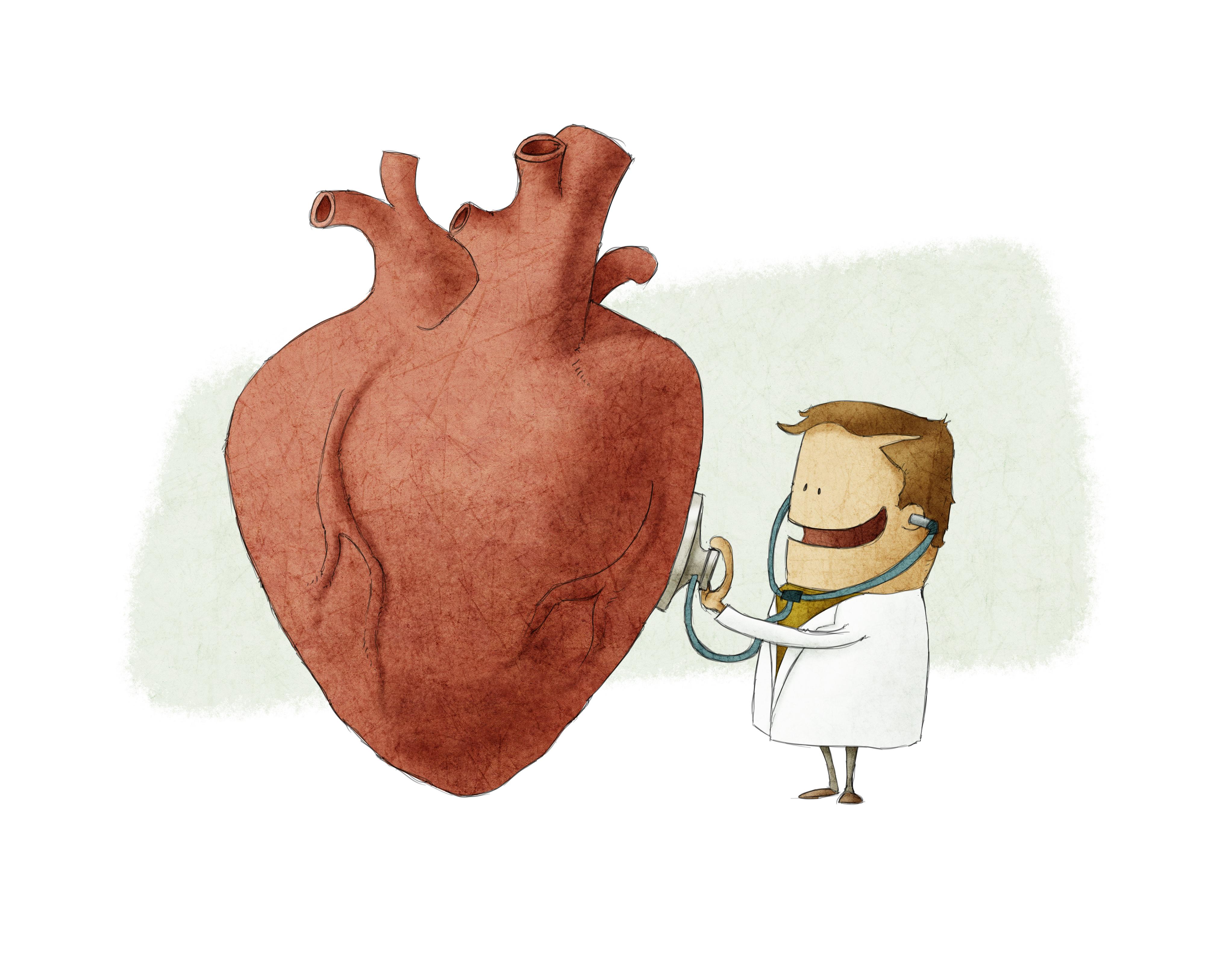 Смешные картинки кардиология сердце доктор, днем